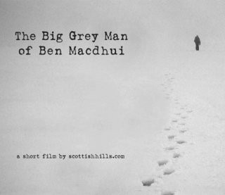 Big Grey Man