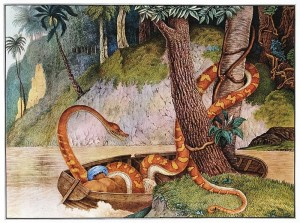 Giant snake, 1867, The Bestiarium of Aloys Zötl 1831-1887