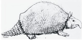 gillette-ray-trunky-glyptodont.jpg