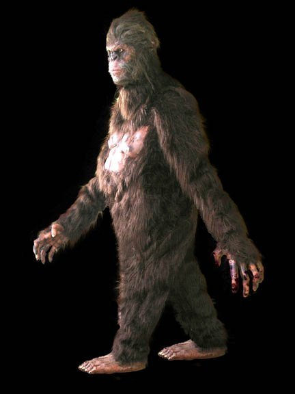 Sasquatch: The Costume