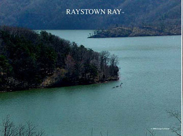 Raystown Ray