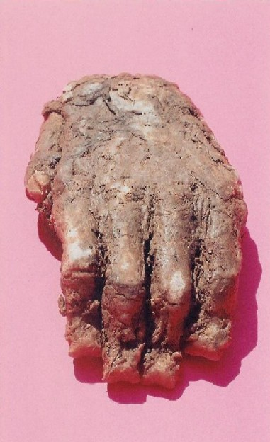 Biscardi Bigfoot Hand