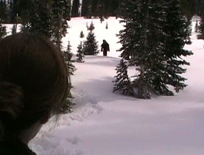 Wolf Creek Pass Bigfoot
