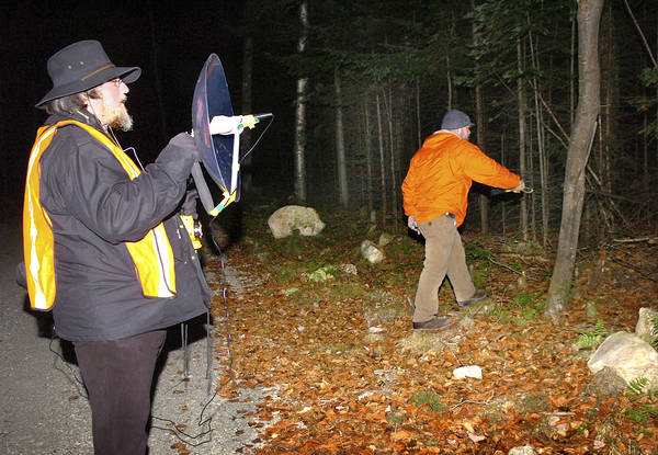 Looking for Bigfoot in Maine