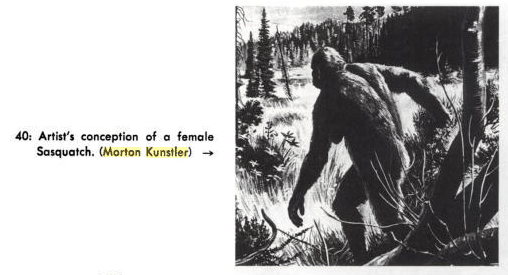 Female Sasquatch