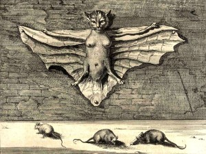 Bat-cat, Athanasius Kircher, China Monumentis, 1667