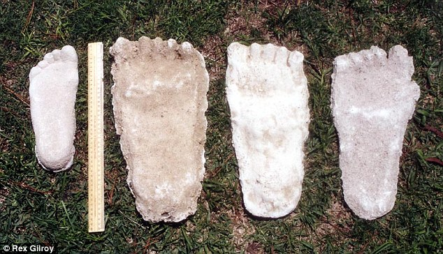 Playing footsie: The Blue Mountains-based expert says the evidence can be found in comparing Yowie footprints with that of the Bigfoot