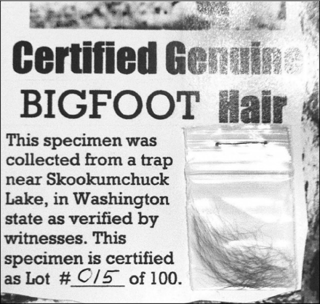 Bigfoot hair