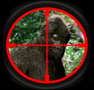 bigfoot_crosshairs