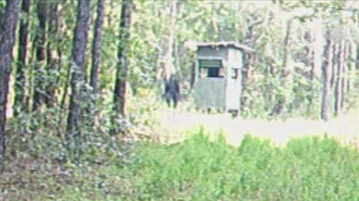 louisianafb