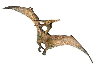 Pterosaur sighting inf...
