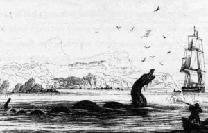 san francisco sea monster